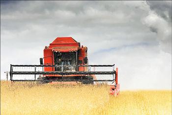 سرمایهگذاری در کشاورزی