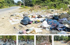 زبالهها عفونتهایی بر تن جنگلها